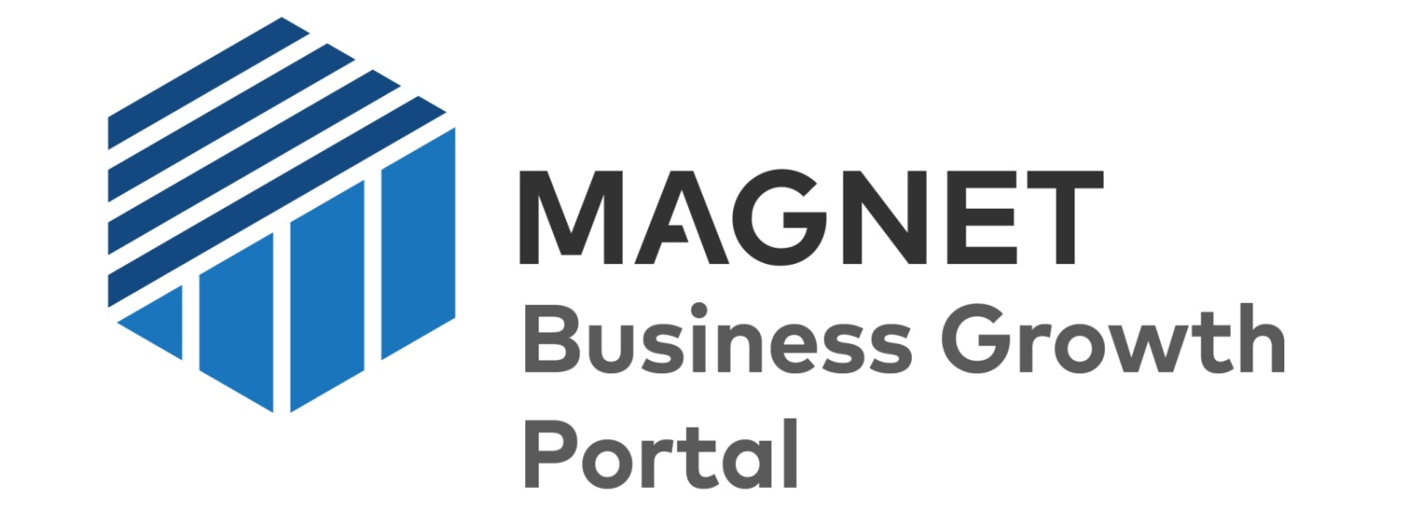 Magnet Business Growth Portal